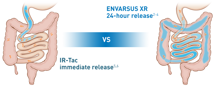 ENVARSUS XR is designed to improve release and absorption of tacrolimus over 24 hours versus IR-Tac